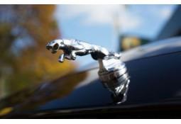 Logo Jaguar ARDEN Jaguar F-PACE (2016-)
