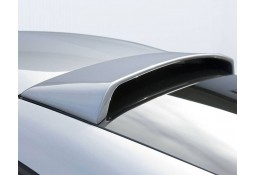 Becquet de Toit HAMANN BMW Z4 M (E86)