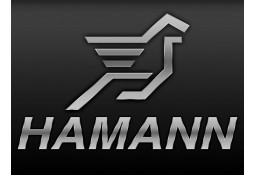 Ressorts Courts HAMANN BMW M3 (F80) (2014-)