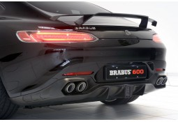 Ligne d'échappement sport BRABUS en titane pour Mercedes AMG GT (C217)