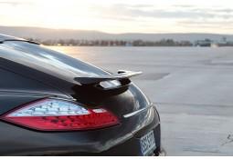 Becquet I TECHART pour Porsche Panamera sauf Turbo (2009-2013)