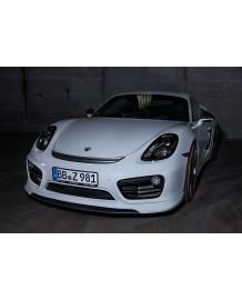 Grille d'aération TECHART Porsche Cayman / Boxster 981 (2012-)