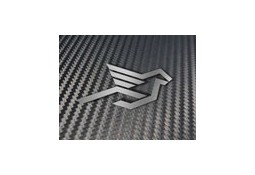 Becquet de coffre carbone HAMANN pour Aston Martin Roadster V8 Vantage