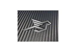 Wings Carbone de Bas de caisse HAMANN pour Bmw M2 (F87)(2016-)