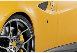 Clignotants Latéraux Teintés NOVITEC Ferrari FF