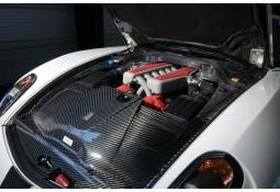 Caches moteur Carbone MANSORY pour Ferrari 599 GTB