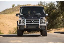 Pare-buffle pour Mercedes Classe G63 G65 AMG (W463) (1989-)