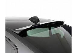 Becquet de Toit HAMANN BMW M5 (F10)