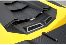 Prises d'Air Moteur Arrière Carbone NOVITEC Lamborghini AVENTADOR SV