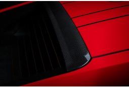 Becquet de toit Carbone TECHART pour Porsche 991.2 GT3