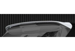 Becquet de toit HAMANN BMW X5 (F15) (2013-)