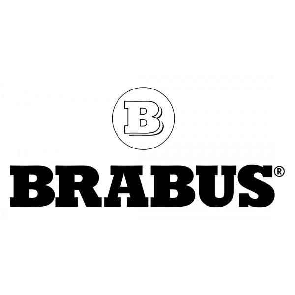 Coques de rétroviseurs Carbone BRABUS Mercedes AMG GT Coupe (X290) (2018+)