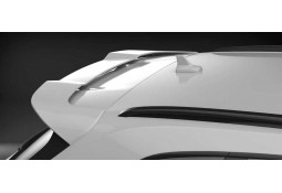 Becquet de toit CARACTERE Audi Q5 (FY) (2017+)