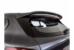 Becquet de toit AC SCHNITZER BMW Série 1 SANS Pack M (F40) (2019+)