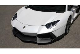 Capot NOVITEC Lamborghini Aventador (+S) Coupé & Roadster
